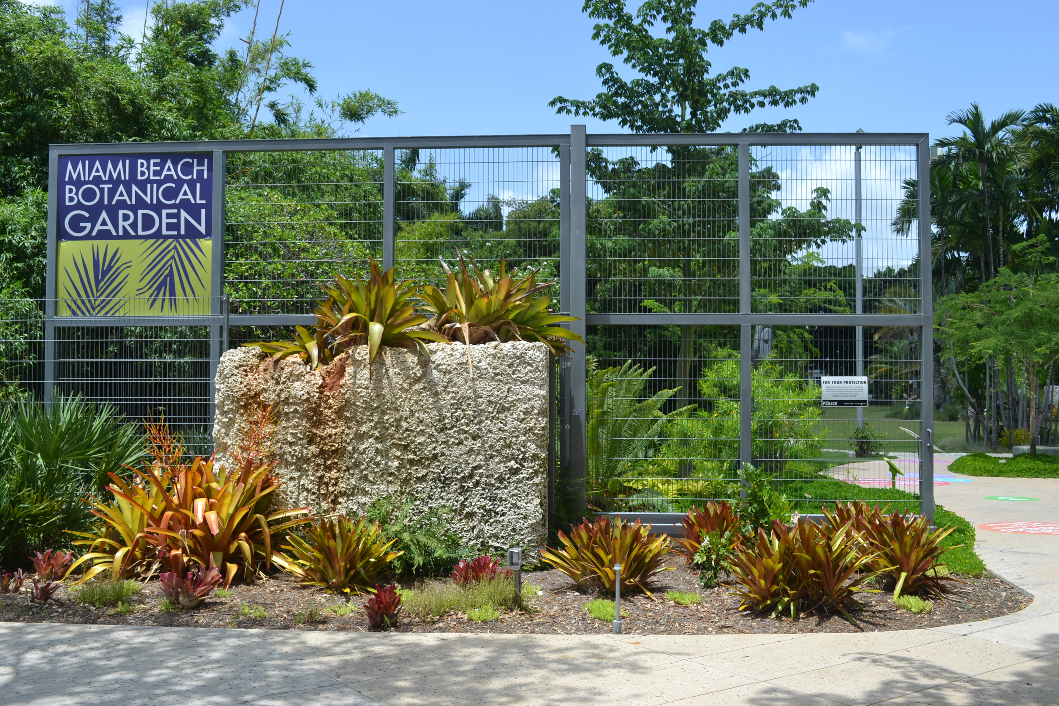 Miami beach botanical garden carla guarilha - Manhattan beach botanical garden ...