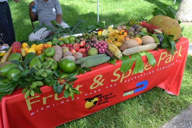 Degustação de frutas.
