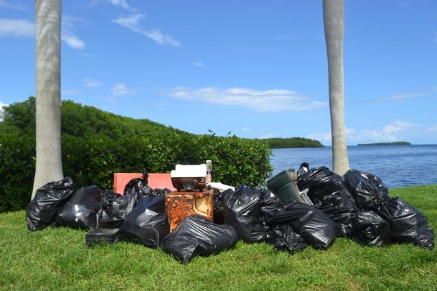 DSC_5981 Lixo recolinhido do Mar