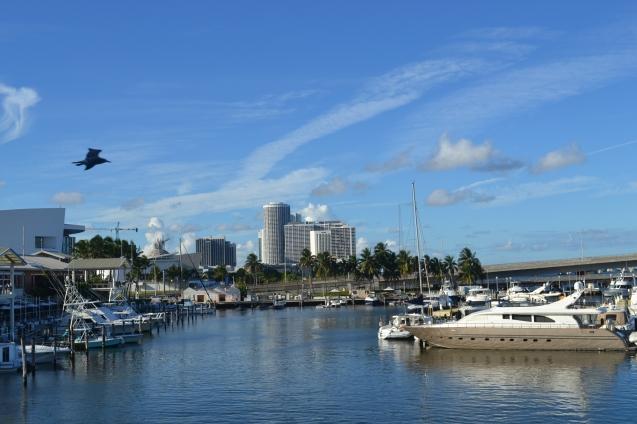 Vista para a baía do Bayside